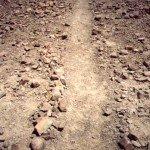 Борозды (полосы) плато Наска вблизи