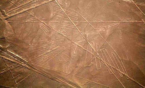 Изображение птицы на плато Наска