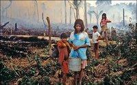 Великие цивилизации погубила засуха