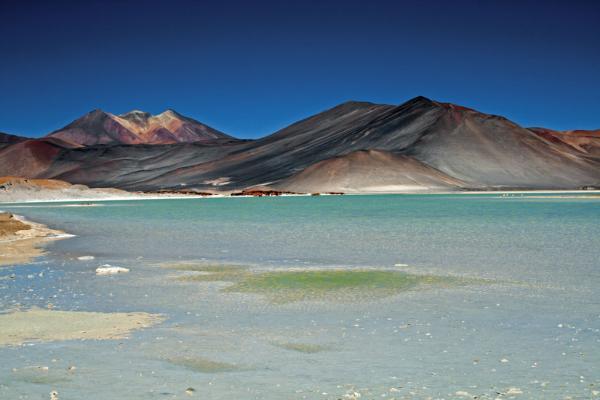 Загадочное плато Альтиплано