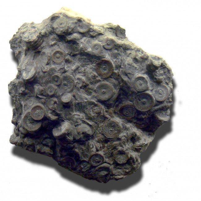 Рукотворный артефакт 400 миллионной давности
