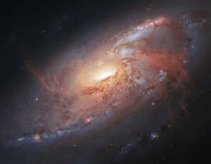 Наиболее полное изображение галактики в созвездии Гончих Псов собрал астроном-любитель