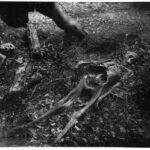 «Ферма тел» (Теннесси, США)
