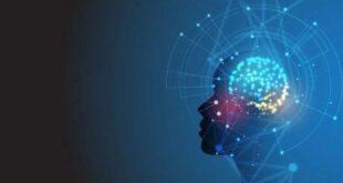 Искусственный интеллект учат отвечать на вопросы