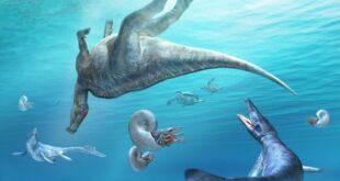 В Японии обнаружен неизвестный ранее родственник гадрозавров