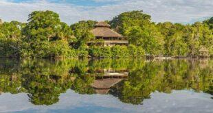 Вджунглях Амазонки нашли древний город