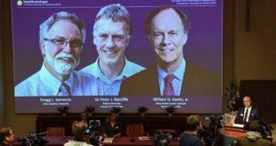 Открытие о клеточной приспособляемости к гипоксии удостоено Нобелевской премии