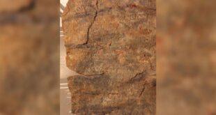 rasshifrovano drevnee prokljatie tancovshhicy f30d1f1