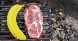 uchenye uznali kto zhivet dolshe mjasoedy ili vegetariancy 7cbd025