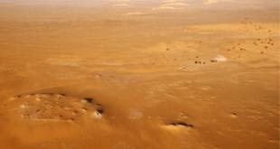 10 tysjach let nazad v sahare zhili velikany 1b5ee8d