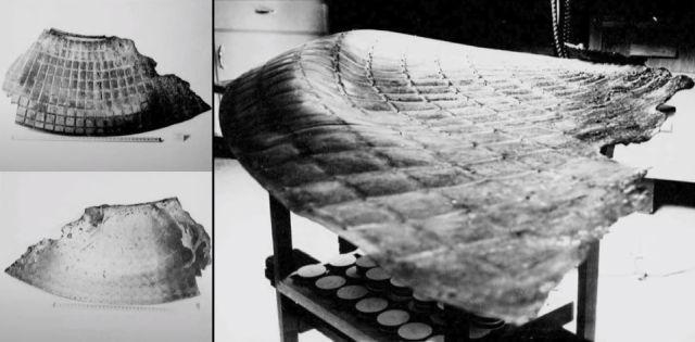 Обломки НЛО с места крушения в Канаде показаны в рассекреченных материалах
